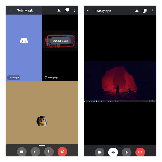 The screen share is also available for Discord mobile.
